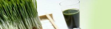 Alkaline Foods & Diet