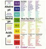 Body pH Scale